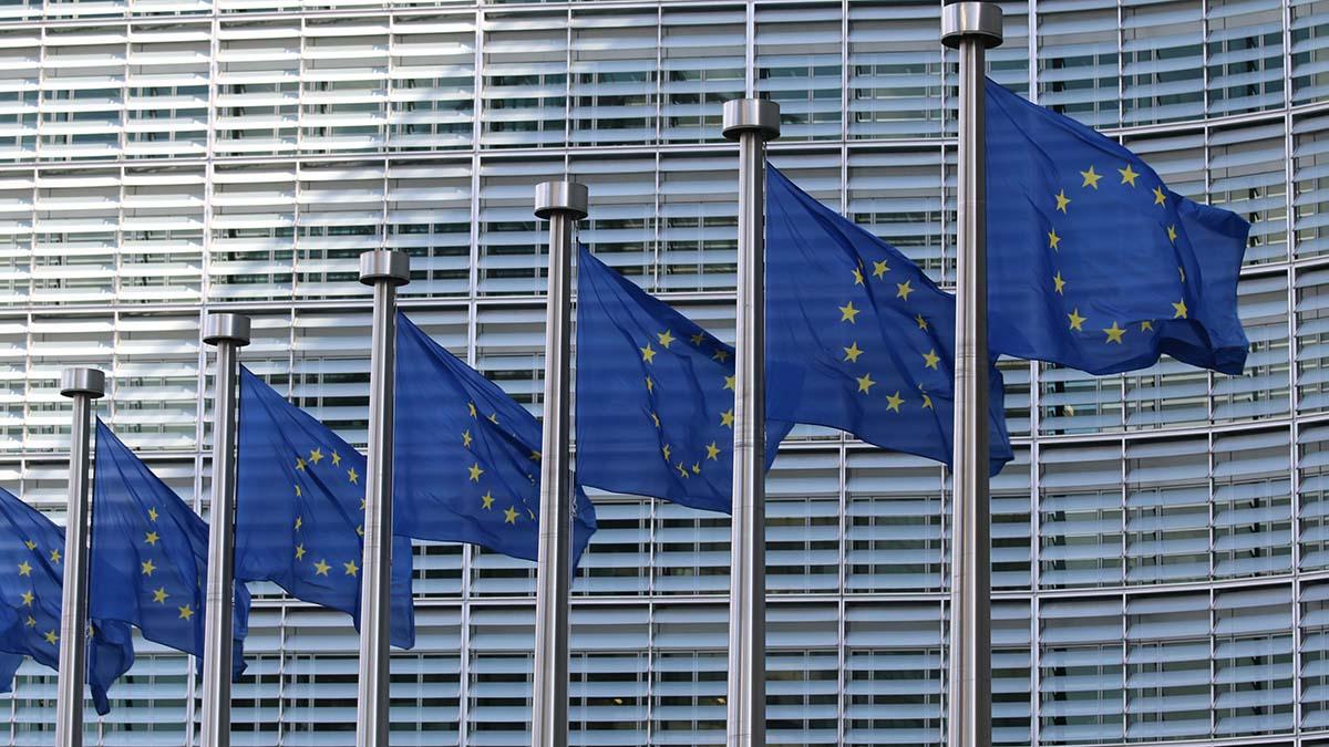 Flagi Unii Europejskiej na masztach
